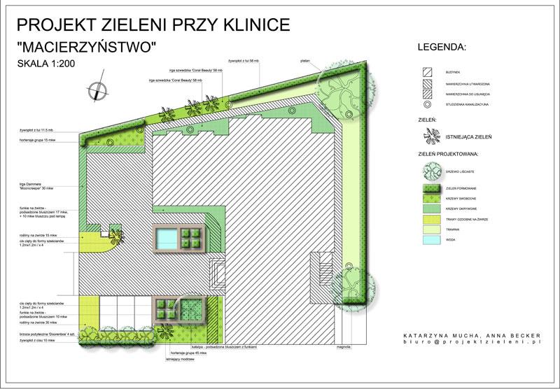 projekt zieleni przy klinice