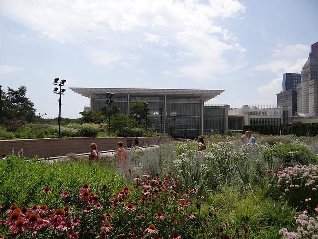 Piet Oudolf - Millennium Park Chicago IL współcześni architekci krajobrazu