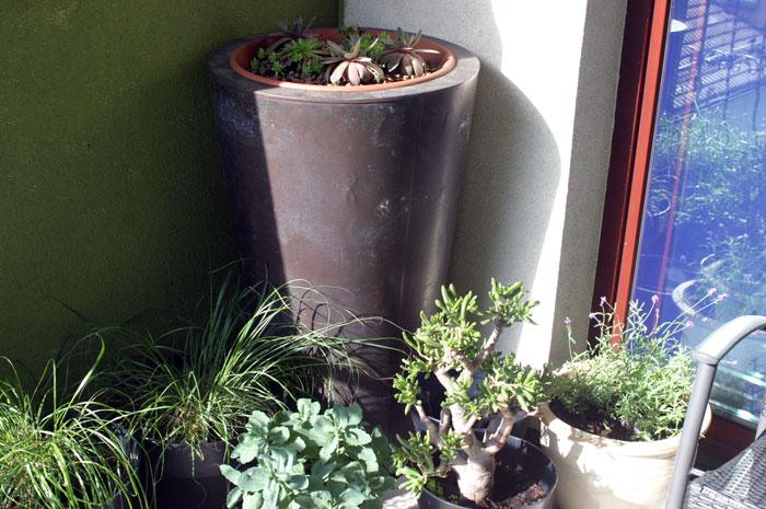zielony-kącik-na-balkonie
