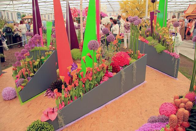 wystawa ogrodowa -ogród kwitnący na różowo