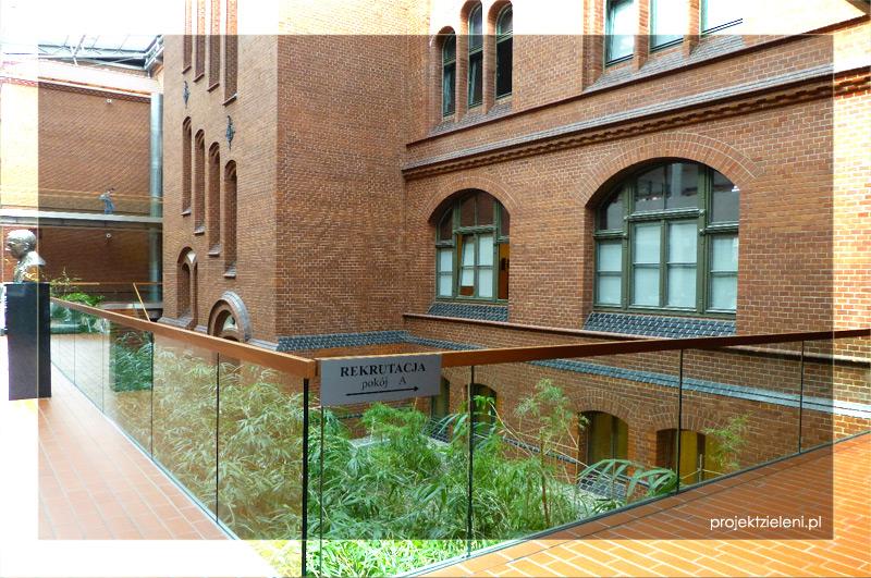 Bambusy we wnętrzach---akademia-muzyczna-w-katowicach