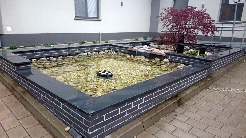 niecka---woda-w-ogrodzie