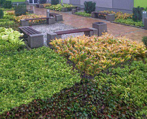 zielen-na-dziedzincu-liceum-iii-w-krakowie-9