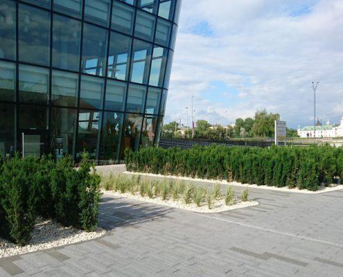 Projekt zieleni przy ICE Kraków